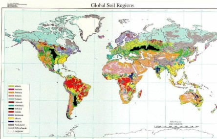 World Soil Map