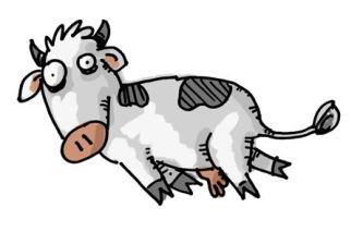 vaca muerta