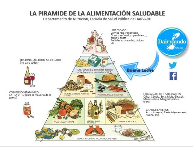 Buena Leche Piramide traducido