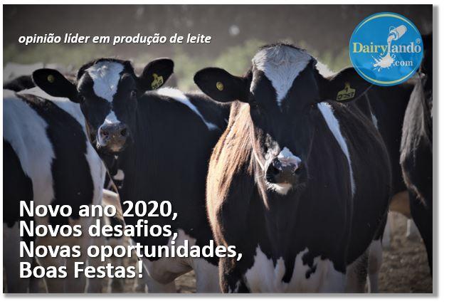 Tarjeta 2019 Dairylando portugues